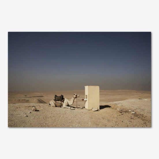 Vagtposten i Sahara. Foto Tine Harden.